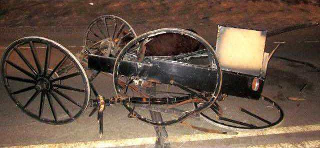 buggy fatal
