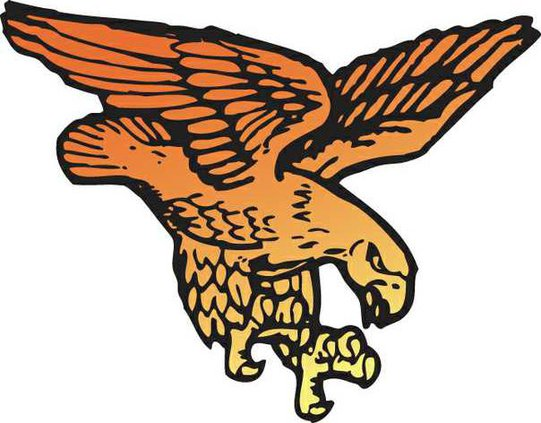 Fennimore Golden Eagle logo