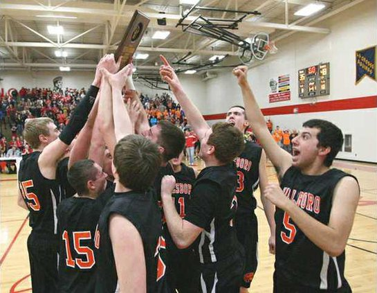 tigers sectional plaque